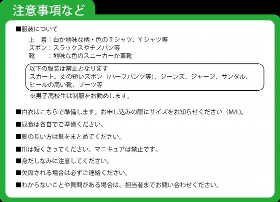 医学生・高校生HP 1日医師体験3